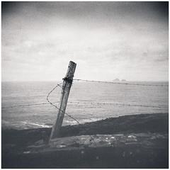 Bolus Head and the Skelligs, Co Kerry (Searcher Irl) Tags: ilford fp4plus 120 6x6 mediumformat film kerry wildatlanticway kingdom skelligs starwars jedi holga analogue lowfi filmisnotdead monochrome