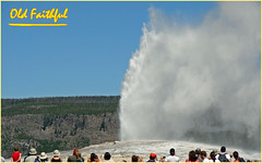 Old Faithful Geyser Eruption - Yellowstone National Park ... (Davey Z(2)) Tags: old faithful erupting yellowstone national park water geyser people watching spectators hill mound hot boiling blue sky sunny day summer misty historic site davey z 1 2 3 photo photograph image picture