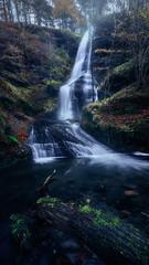Javy Nájera Fotografía (Javy Nájera) Tags: bizkaia euskadi javynájera otoño paisvasco uguna agua bosque cascada montaña natural naturaleza paisaje vida árbol
