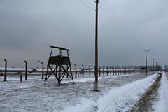 IMG_6745 (Guven Celikkaya) Tags: auschwitz birkenau poland nazi concentration polonya krakow toplama kampı