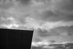 DSCF2811 (frederikboving) Tags: arken seagull profile silhouette monochrome cloudscape bw denmark ishøj museum modern art