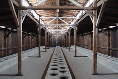 IMG_6768 (Guven Celikkaya) Tags: auschwitz birkenau poland nazi concentration polonya krakow toplama kampı