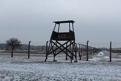 IMG_6753 (Guven Celikkaya) Tags: auschwitz birkenau poland nazi concentration polonya krakow toplama kampı