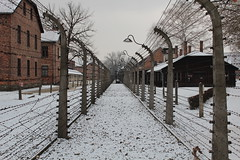 IMG_6738 (Guven Celikkaya) Tags: auschwitz birkenau krakow poland nazi death camp concentration camps polonya toplama kampı
