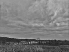 Goose Lake (gmolzahn) Tags: gooselake iphone digitaldarkroom digitalbw snapseed