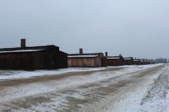IMG_6775 (Guven Celikkaya) Tags: auschwitz birkenau poland nazi concentration polonya krakow toplama kampı