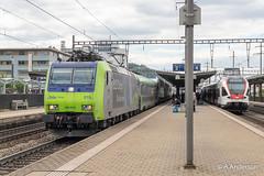 485019 20190515 Pratteln (steam60163) Tags: switzerland swissrailways pratteln sbb bls class485 traxx