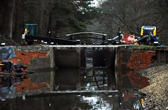 Basingstoke Canal Deepcut 25 January 2020 003 (paul_appleyard) Tags: basingstoke canal works lock gate drained empty brickwork repairs maintenance deepcut surrey january 2020 reflection reflections