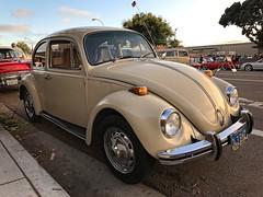 VW Beetle (robtm2010) Tags: encinitascarshow carshow motorvehicle vehicle iphone iphone7 encinitas california usa car westcoast automobile auto cruisenight vw volkswagen bug beetle foreigncar foreign german