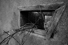 Emergency exit (Un jour en France) Tags: canoneos6dmarkii canonef1635mmf28liiusm monochrome noiretblanc noiretblancfrance black fenêtre abandonné