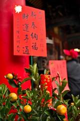 文昌宮_19 (Taiwan's Riccardo) Tags: 2020 taiwan digital color dc sigmadp2x sigmalens x3foveoncmossensor fixed 242mmf28 桃園縣 桃園市 chinesenewyear 文昌宮