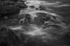 Schoodic Peninsula (Thomas Pohlig) Tags: acadia acadianationalpark maine nationalparks rocks rockyshoreline coast blackandwhite blackandwhitephotography monochrome mono light