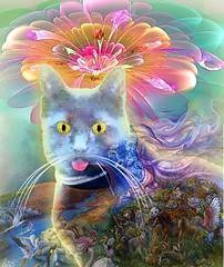 The blue cat in the garden (jaci XIV) Tags: gato animal jardim fantasia cat garden fantasy