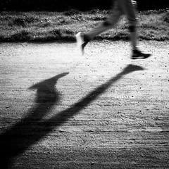 Schattenlauf ... (Klaus Wessel) Tags: rollei rolleicord analog film fomapan fomapan200 lauf laufen run blackwhite monochrome sw schatten shadow street streetphotography 6x6 mittelformat