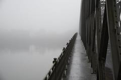 Pont vallée de la Loire (eric.courant) Tags: maine et loire pont architecture brume brouillard fog d850 sigma 24 105 f4 art