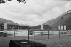 Einstieg (vladixp) Tags: fp4 fp4plus fp480 d76 14min 20c 12 praktica mtl5 flektogon k2 pf7250u 3600dpi 35mm yellowfilter filmscan 35mmfilm film bw bwfilm filmphotography negative scanned svizzera schweiz switzerland suisse brienz brienzsee brienzersee einstieg