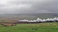 The Long Drag: 35018 (Gerald Nicholl) Tags: cumbrianmountainexpress wcrc merchantnavy mn bulleid sr 35018 britishindialine sc settleandcarlisle selside longdrag steam engine loco locomotive train express yorkshire