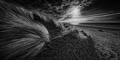 Strand Westenschouwen (glessew) Tags: strand beach pplage duinen dunen dunes sand zand sable westenschouwen schouwenduiveland zeeland