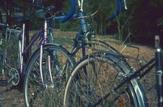 Bicycles (fs999) Tags: fs999 fschneider aficionados zinzins leitz wetzlar minolta leica cl leicacl japan 135 24x36 film camera filmcamera ashotadayorso topqualityimage topqualityimageonly artcafe pentaxart corel paintshoppro paintshoppro2019ultimate 2019ultimate voigtländernoktonclassic35mmf14vm cosina voigtländer nokton classic 35mm f14 vm 35f14 wide angle agfa agfachrome rsxii rsx100 100iso agfarsx agfarsx100 color slidefilm slide reversible expired tetenal colortec e6 home development epson perfection v500 scanner 3200dpi écomusée alsace ungersheim hautrhin france