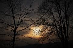 Ogni tramonto porta la bellezza di una nuova alba. (R. W. Emerson) (ornella sartore) Tags: inverno tramonto colori natura alberi cielo rami canon