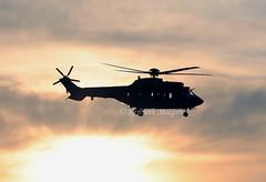 T-333 (Ken Meegan) Tags: t333 eurocopteras352ulcougar 2521 swissairforce zurich 2112020 eurocopter as352ul cougar