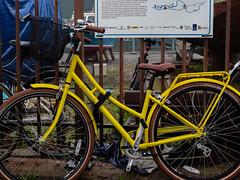Harbourside WfH 20200122-118.jpg (downsrunner) Tags: bristol harbourside bicycle