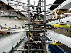 Harbourside WfH 20200122-120.jpg (downsrunner) Tags: rowing bristol harbourside