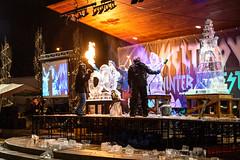 Meltdown Winter Ice Festival - The Big Reveal (janedsh) Tags: festival wayne county meltdown indiana jack elstro plaza richmond park sculptor photo by jane holmanphotoscom icecarver jackelstroplaza photobyjane waynecounty