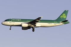 Aer Lingus A320 EI-GAM at Heathrow Airport LHR/EGLL (dan89876) Tags: aer lingus airbus a320 a320200 a320214 eigam london heathrow international airport landing rumway 27l arrival lhr egll aviation