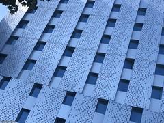 un immeuble urbain© (alexandrarougeron) Tags: photo alexandra rougeron ville urbain paysage