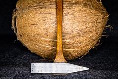 Armer Hammer --- Poor hammer (der Sekretär) Tags: detail eisen frucht früchte hammer holz kokosnuss metall stahl closeup coconut fruit fruits iron metal steel wood
