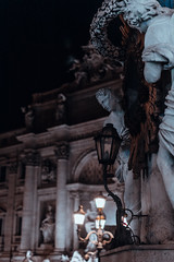 _DSC9738 (gassity) Tags: italy travel rome florence street beautiful architecture sculpture nature italia roma firenze