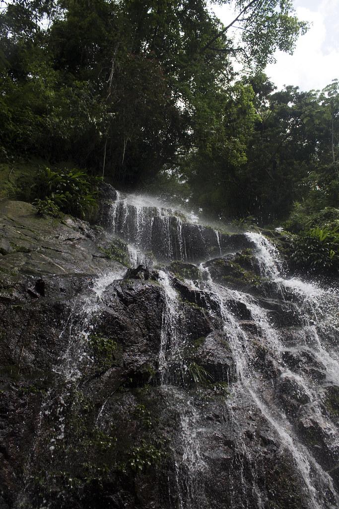 Cascada images