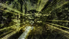 There is No Time Like the Present (soniaadammurray - On & Off) Tags: digitalart art myart visualart abstractart experimentalart contemporaryart artchallenge picmonkey photoshop clichés trees nature look beauty present shadows reflections green sunlight sunrays light hcs clichesaturday