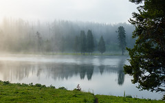 Yellowstone National Park (Curtis Lannom) Tags: nationalpark yellowstone nps teton nature