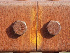 Rusty Bolts (Tricia H C) Tags: rust bolt orange metal