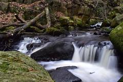Padley Gorge (LMW76) Tags: peak district derbyshire padley gorge burbage brook flowing water stream rocks
