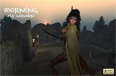 Morning Assassin (Steve Marlette) Tags: sl secondlife fantasy elven sexy dd avatar ava