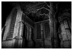 Old Church, Naaldwijk (leo.roos) Tags: bw nacht boom nl churc tijdopname tree church window night westland kerk oudekerk 13thcentury naaldwijk longexposure noiretblanc cz amount darosa sal24f20z distagon2420za distagont224 leoroos sony242 a7rii sonycarlzeiss24mmf2zassmdistagon 2020