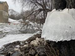 Dam Ice (marlondale) Tags: annarbor winter dam barton