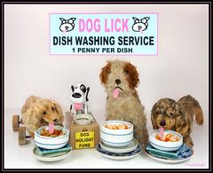"Dog Lick Dish Washers (photozaki) Tags: ""flickrfriday"" ""dishes"" ""vaisselle"" ""pratos"" ""geschirr"" ""platos"" ""dish washer"" dishwasher ""dog lick"" dog dogs ""money box"" ""still life"" ""dirty dishes"" ""holiday fund"" ""close up"" olympus ""olympus omd em5 mk2"""