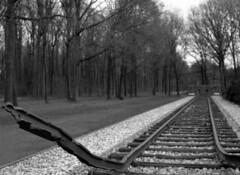 Kamp Westerbork (Ernst-Jan de Vries) Tags: ilfordhp5 ilfosol3 19 ilfosol zwartwit blackwhite mamiya mediumformat mittelformat middenformaat film analoog analogue analog scan epson4490 negative negatief 120 645 filmisnotdead ishootfilm westerbork holocaust wwii 75jaarbevrijding 75liberation freedom memorial monument rail track spoor kampwesterbork monochrome m645