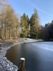 20200125 Little pond in winter (Puste66blume) Tags: sachsen vogtland pond teich inesbilder puste66blume