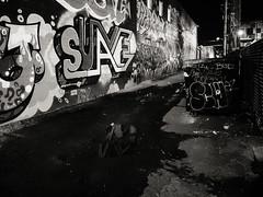 RiNo at night (Web-Betty) Tags: rino bnw streetart denver colorado alley urban city blackandwhite night