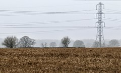 Fog over the 'Shire (rrlammas) Tags: shropshire fog mist fields pylons trees farmers field countryside atmospheric