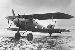 Albatros D-III (DREADNOUGHT2003) Tags: wwi fighters fighter fighterbombers fighterbomber biplanes biplane triplanes triplane fokker fokkertriplanes sopwithcamel sopwithpup nieuports spads albatros se5 aces geswalder aerialwarfare