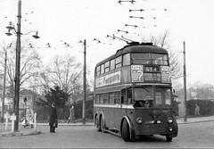 London transport B1 trolleybus 89 on route 654 Sutton Green 1959. (Ledlon89) Tags: bus buses trolleybus lt lte london transport londonbus londonbuses vintagebuses
