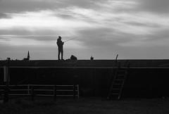 January 2020_74 (Satoshi Kondo) Tags: monochrome bw bnw blackandwhite blackandwhitephoto blackandwhitephotography bnwphoto bwphoto bnwphotography bwphotography blackandwhitepoto blackandwhitepotography filmphotography filmphoto filmcamera film flimphotography kodak kodaktx400 400tx trix leica leicam3 elmar90mm 90mm