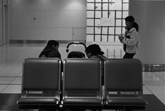 January 2020_70 (Satoshi Kondo) Tags: blackandwhite bw monochrome bnw bwphotography bwphoto blackandwhitephotography blackandwhitephoto bnwphoto bnwphotography blackandwhitepotography blackandwhitepoto leica film kodak trix 400tx filmcamera 90mm filmphotography leicam3 kodaktx400 filmphoto elmar90mm flimphotography