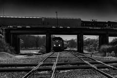 (o texano) Tags: houston texas trains freights bench benching graffiti unionpacific railroad engine englewood